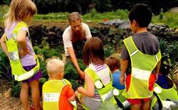 Đây chính là lý do khiến New Zealand trở thành quốc gia có nền giáo dục thân thiện với môi trường nhất thế giới