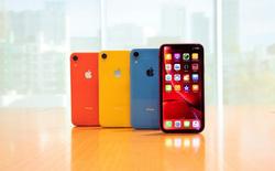 Apple sẽ chưa loại bỏ thiết kế tai thỏ trên iPhone cho đến năm 2020?