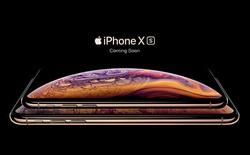 Hãng phân tích Citi dự báo Apple sẽ giảm 1/2 sản lượng iPhone XS Max trong quý tới