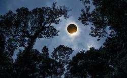 """Nhận vốn từ Bill Gates, các nhà khoa học Harvard sẽ tiến hành """"che Mặt Trời"""" để Trái Đất bớt nóng"""