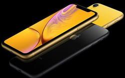 Doanh số iPhone XR suy giảm làm Japan Display giảm 30% sản lượng của tháng 12