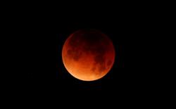 """Xem lại những hình ảnh của hiện tượng """"siêu trăng xanh máu"""" trên toàn thế giới vừa diễn ra tối qua"""