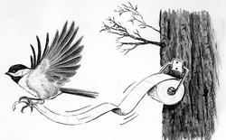 Cà tím chứa nicotine, loài chim không biết tiểu tiện và 16 sự thật không phải ai cũng biết