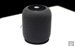 Chi phí sửa chữa của Apple HomePod đắt gần bằng việc mua một chiếc loa mới
