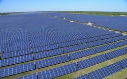 Elon Musk: Chỉ cần một góc nhỏ của bang Nevada để xây dựng nhà máy điện mặt trời đủ cung cấp cho toàn bộ nước Mỹ