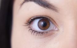 AI của Google có thể chẩn đoán tình trạng tim mạch bằng cách quét... mắt của bệnh nhân