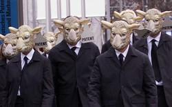 Các nhà khoa học tạo được phôi thai lai giữa người với cừu ở tỷ lệ 1/10.000