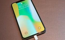 Morgan Stanley cho rằng cổ phiếu của các công ty sản xuất chip đang gặp nguy cơ do Apple đã sản xuất quá nhiều iPhone