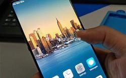 """Vivo chuẩn bị ra mắt smartphone màn hình vô cực 100%, không hề có """"tai thỏ""""?"""