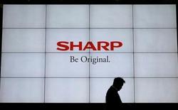 Liệu rằng việc liều lĩnh mua lại mảng PC của Toshiba có giúp Sharp có chân trên thị trường PC?