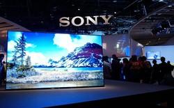 Mải xem Samsung đại chiến LG, người ta quên mất rằng Sony đang nhăm nhe vượt mặt cả hai ông lớn này trên thị trường TV cao cấp