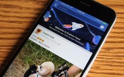 Thử nghiệm thất bại, Facebook quyết định sẽ không hoạt động dưới hình thức 2 News Feed như kế hoạch ban đầu
