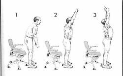 Hướng dẫn đứng và ngồi đúng cách, giúp dân văn phòng giảm nguy cơ đau mỏi cột sống