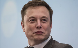 Elon Musk định bán thêm cả gạch xếp hình, lấy từ chính công trường đào hầm của The Boring Company