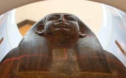 Bất ngờ phát hiện xác ướp trong một chiếc quan tài tưởng chừng trống rỗng tại viện bảo tàng Úc