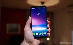 Nếu dự định mua LG G7, bạn có thể lựa chọn giữa màn hình LCD truyền thống hoặc OLED hiện đại