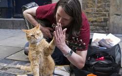 Cuộc đời chàng nghệ sĩ nghèo, nghiện ngập, vô gia cư bước sang trang mới nhờ... một chú mèo!