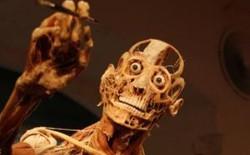Ghé thăm 10 bảo tàng kỳ quái nhất trên Trái đất: Nếu yếu tim, bạn có thể mạnh dạn bỏ qua nơi cuối cùng