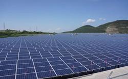 Báo Nhật đưa tin Việt Nam sắp có nhà máy điện mặt trời trị giá gần 50 triệu USD