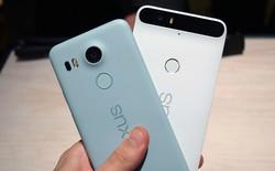 Google xác nhận Nexus 5X, 6P và tablet Pixel C sẽ không được cập nhật Android P