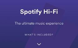 Mẹo giúp cải thiện chất lượng âm thanh Spotify cho giới audiophile