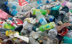 Các nhà khoa học vô tình tạo ra enzyme đột biến tiêu hủy được nhựa chỉ trong vài ngày