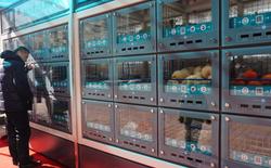 Tại Trung Quốc, những chiếc máy bán hàng tự động thông minh giờ chẳng khác gì các cửa hàng tiện lợi