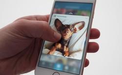 Apple sẽ loại bỏ tính năng 3D Touch trên phiên bản iPhone giá rẻ sắp ra mắt