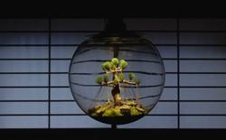 Sống ẩn dật với bóng đèn hỏng, tivi cũ, người đàn ông Nhật khiến bao người ngỡ ngàng khi nhìn những thành quả nghệ thuật thực sự