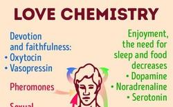 Có tình yêu nào là mãi mãi - khoa học cuối cùng cũng có câu trả lời cho bạn