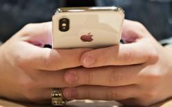 Gene Munster: 'Nếu doanh số iPhone giảm, tương lai của Apple có thể là một công ty dịch vụ'