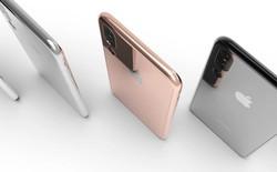 Đây là chiếc iPhone X Plus trong mơ của bạn
