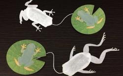 """Túi trà hình con ếch đến từ Nhật Bản sẽ giúp bạn thưởng trà theo cách không thể """"lưỡng cư"""" hơn"""