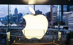 Trái ngược với Apple, các nhà sản xuất linh kiện và lắp ráp iPhone không vui một chút nào