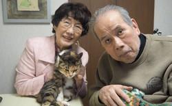 Bỏ cả nghìn đô để tìm mèo đi lạc và câu chuyện về nghề nghiệp đặc biệt chỉ có ở Nhật Bản