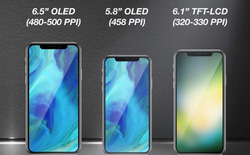 Phiên bản iPhone giá rẻ vẫn sẽ sở hữu màn hình OLED chứ không phải LCD như dự đoán của Ming-chi Kuo?