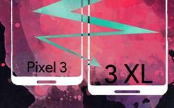 Lộ diện màn hình và các chi tiết của Pixel 3 XL
