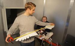 Silent Flyer: Drone trông giống chim, bay lượn như chim, giá bán từ 1,8 - 2 tỷ đồng