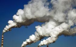 Mỗi kết quả tìm kiếm của Google đều có mặt trái: chúng dẫn đến sự thải khí CO2