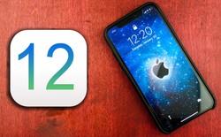 iOS 12 vô tình tiết lộ kích thước màn hình của iPhone X Plus