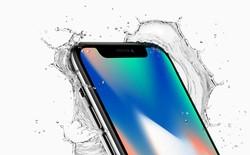 Kinh ngạc iPhone X rơi xuống sông 2 tuần vẫn sử dụng được