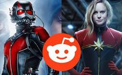 Tiếp tục bị nghi làm lộ kịch bản cả hai bom tấn sắp tới, Reddit đúng là khắc tinh của Marvel!