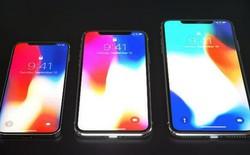 Phiên bản smartphone giá rẻ sắp ra mắt của Apple sẽ là mẫu điện thoại được yêu thích nhất trong thế hệ iPhone 2018