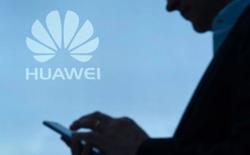Huawei đang phải khổ sở thuyết phục các chính trị gia tại Úc tin tưởng vào công nghệ và sản phẩm của hãng