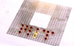 Điều khiển được hạt nước trên bảng mạch, phòng thí nghiệm MIT tạo ra cách điều chế thuốc đột phá ít tốn kém hơn nhiều trước đây