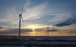 Thế giới sẽ sử dụng 50% năng lượng có thể tái tạo và 11% than đá vào năm 2050