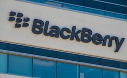 Doanh thu phần mềm gây thất vọng, cổ phiếu BlackBerry xuống thấp nhất trong năm