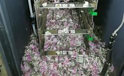Ấn Độ: Chuột lọt vào máy ATM cắn nát số tiền 19.000 USD sau đó... tử nạn