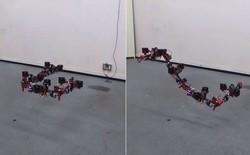 Làm drone chán rồi, người Nhật chế tạo hẳn robot rồng bay lượn uốn éo như phim