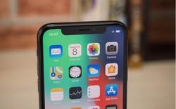 Apple ký hợp đồng đặt mua tới 4 triệu màn hình OLED cho iPhone 2019